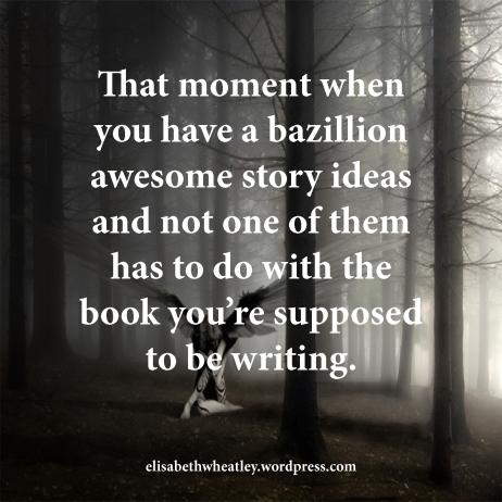 Author quote 16